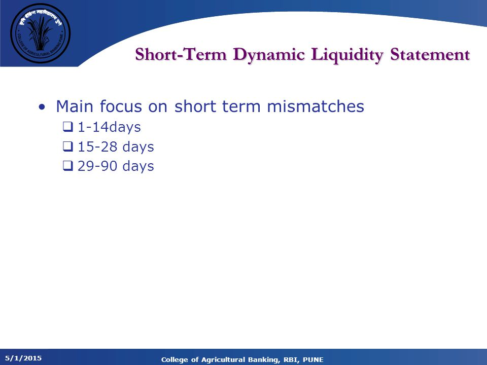 Short-Term Dynamic Liquidity Statement