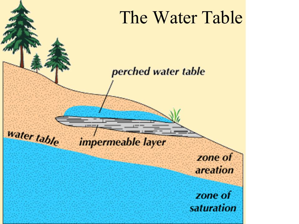 The Water Table