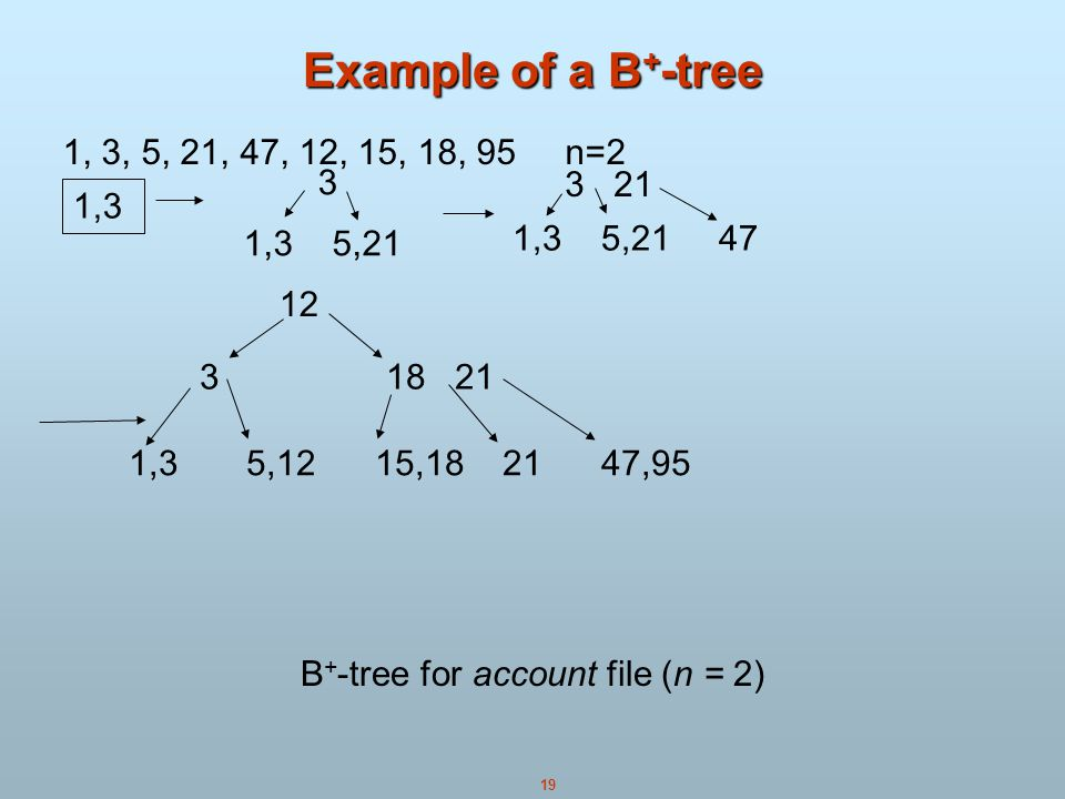 B+-tree for account file (n = 2)
