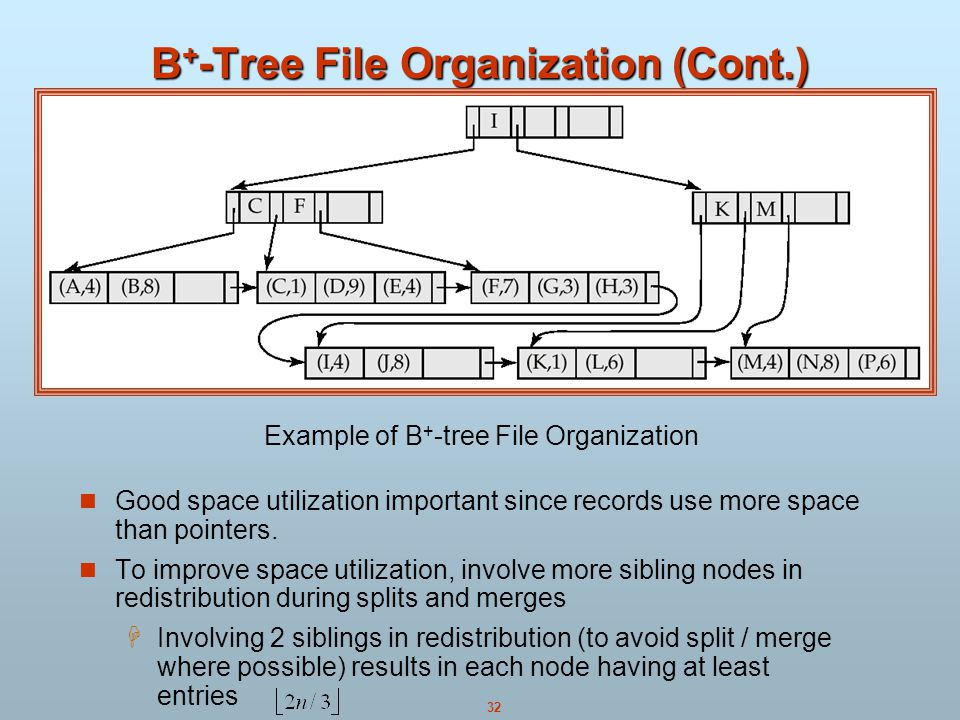 B+-Tree File Organization (Cont.)