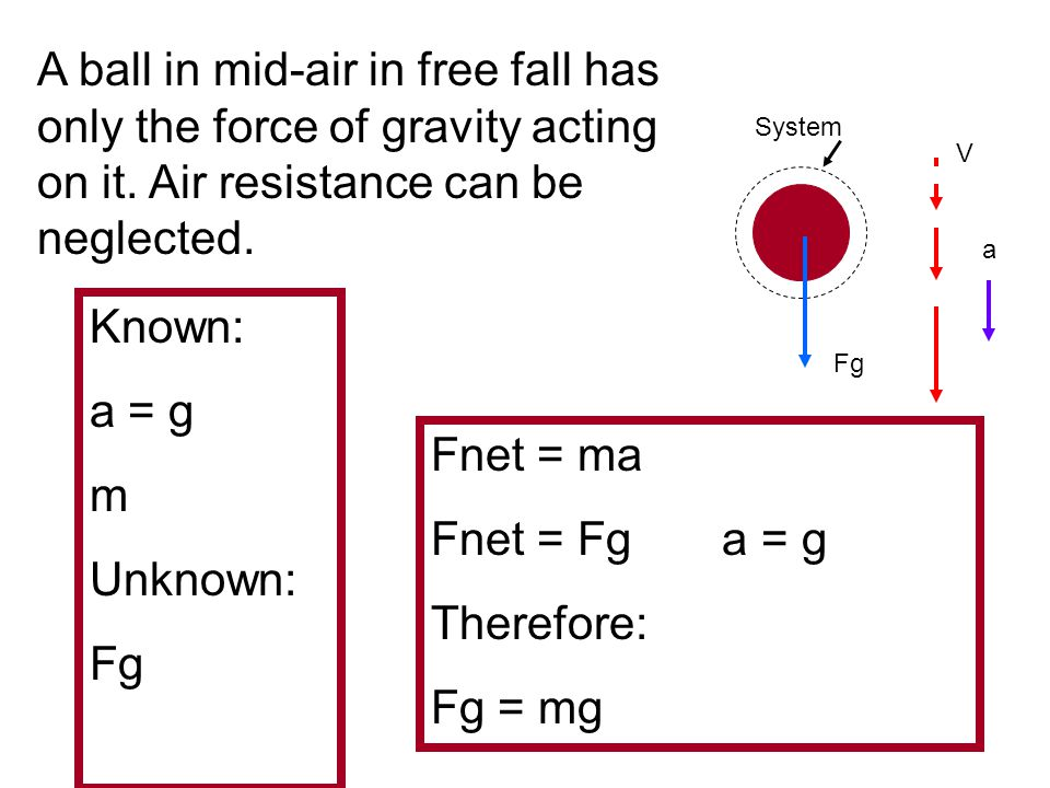 A ball in mid-air in free fall has only the force of gravity acting on it. Air resistance can be neglected.