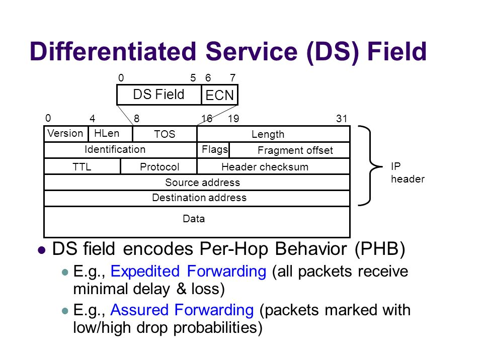 Differentiated Service (DS) Field