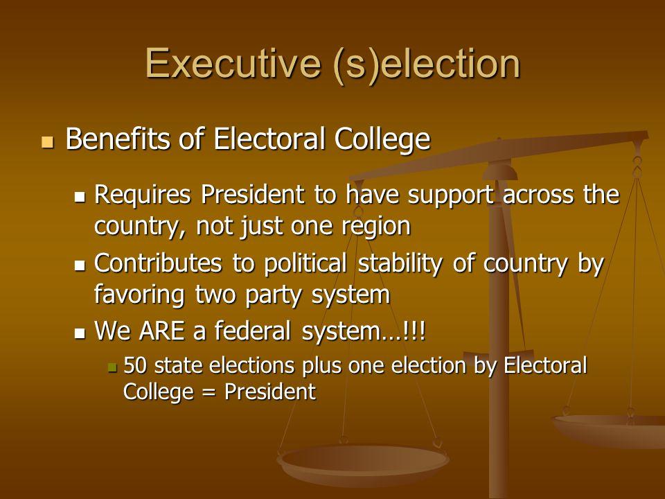 Executive (s)election