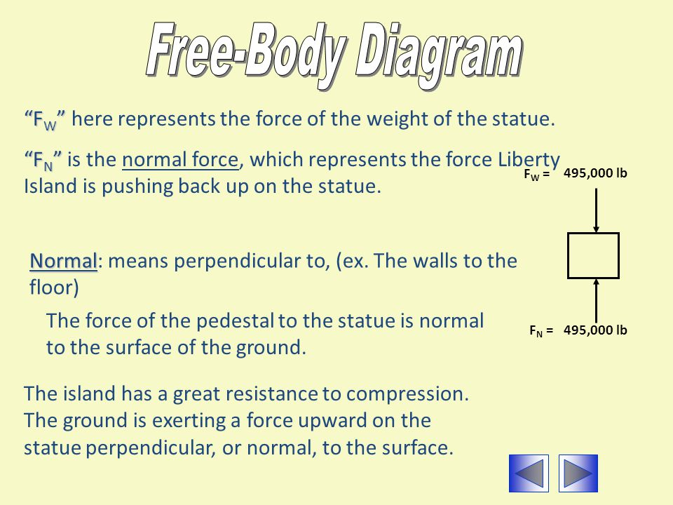Free-Body Diagram FW here represents the force of the weight of the statue.