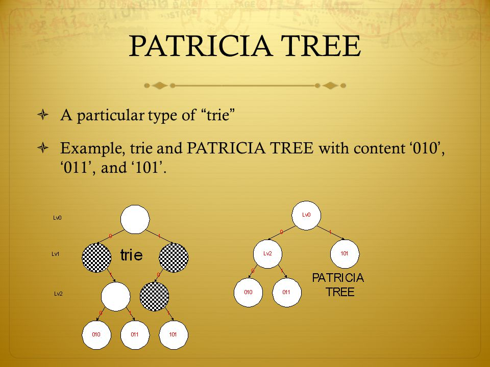 PATRICIA TREE A particular type of trie