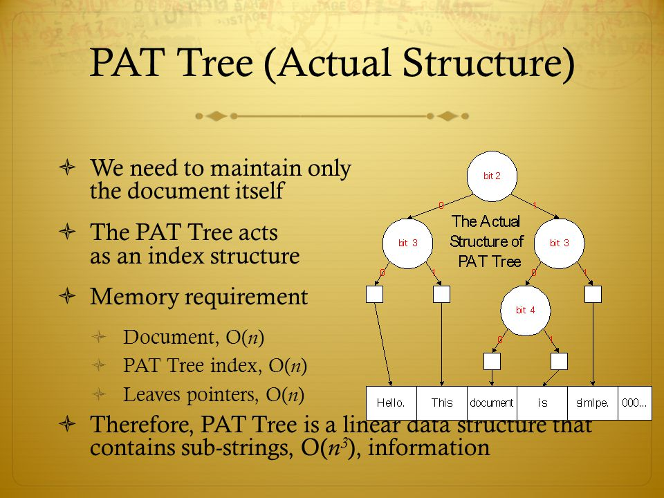 PAT Tree (Actual Structure)