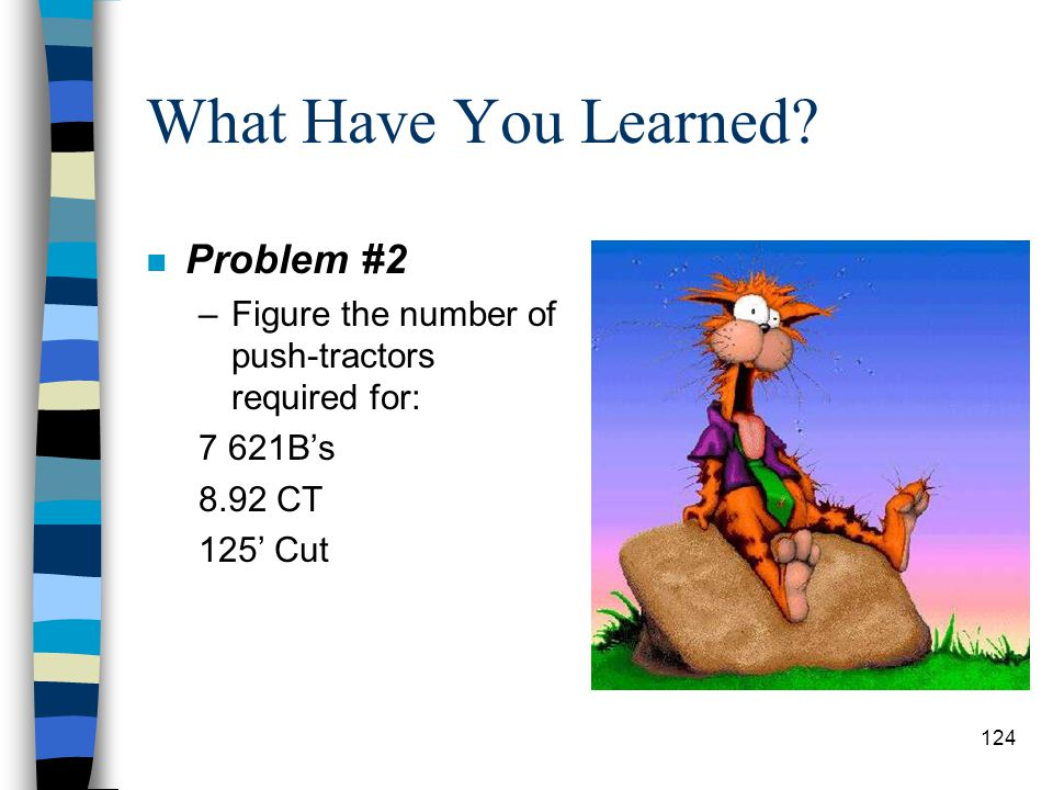 What Have You Learned Problem #2