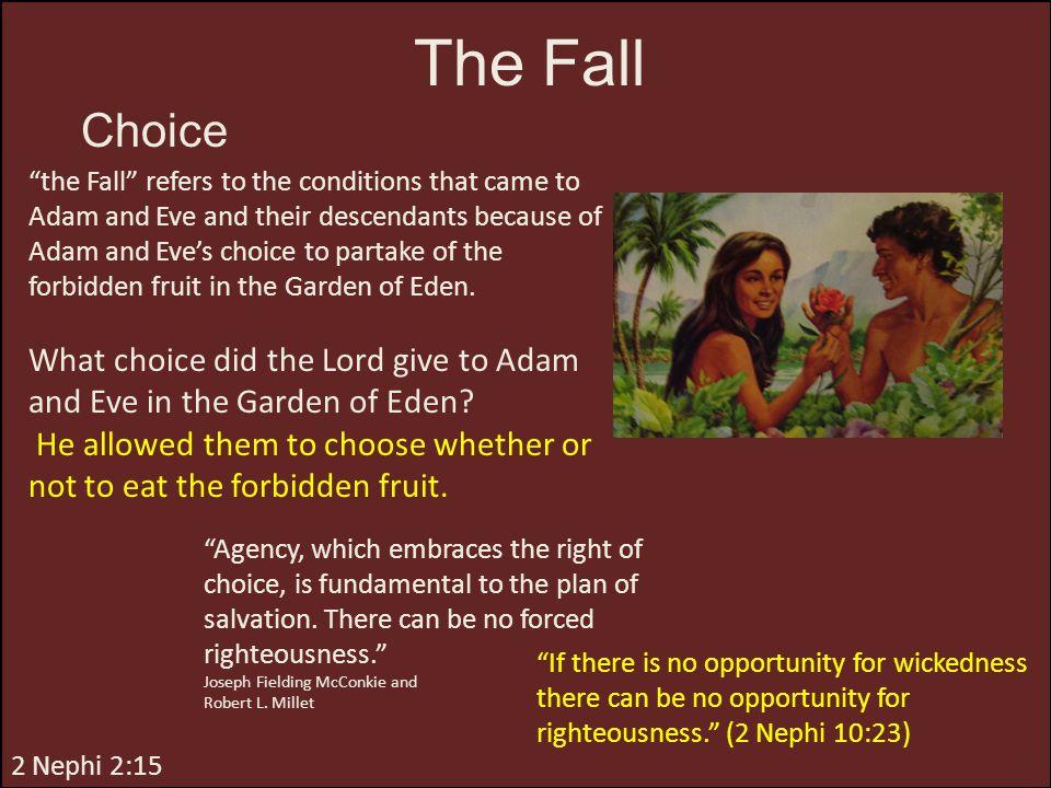The Fall Choice.