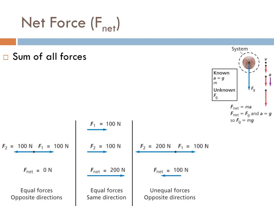 Net Force (Fnet) Sum of all forces