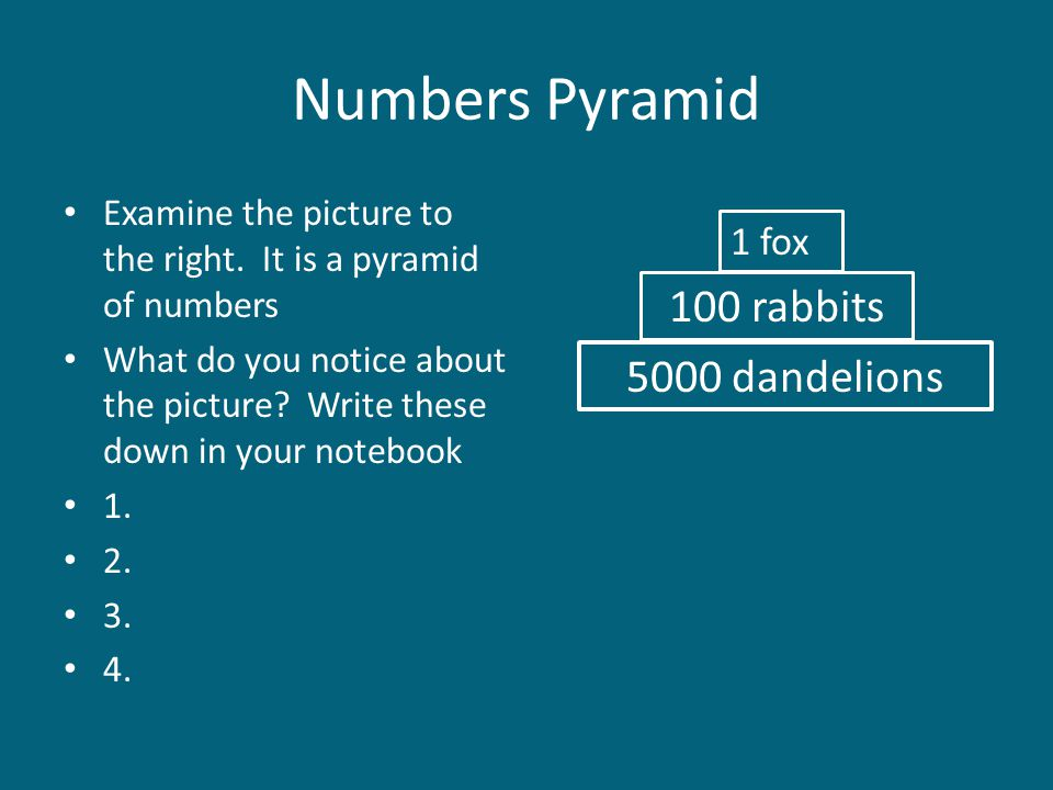 Numbers Pyramid 100 rabbits 5000 dandelions 1 fox