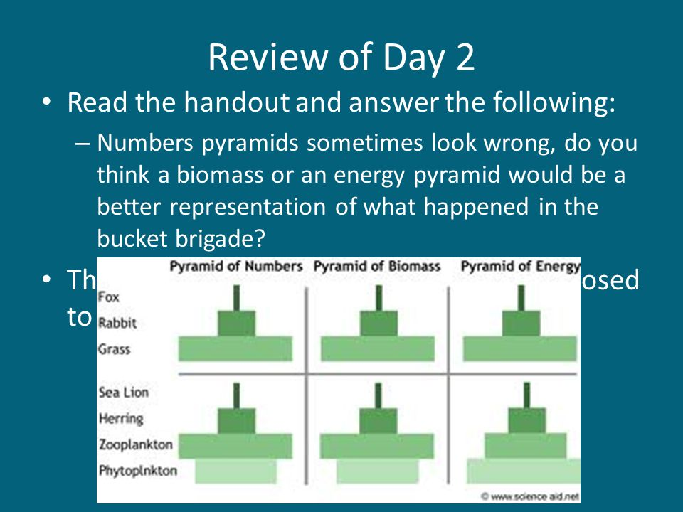 Review of Day 2 Read the handout and answer the following: