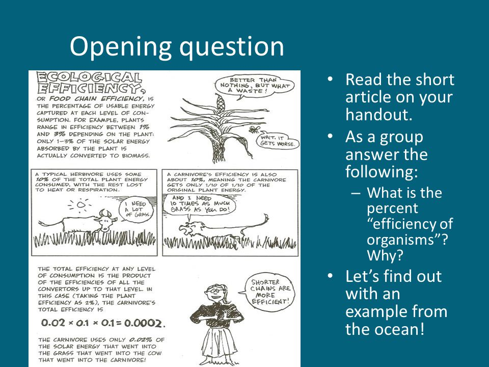Opening question Read the short article on your handout.