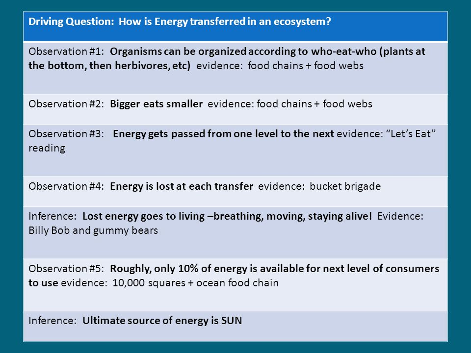 Driving Question: How is Energy transferred in an ecosystem