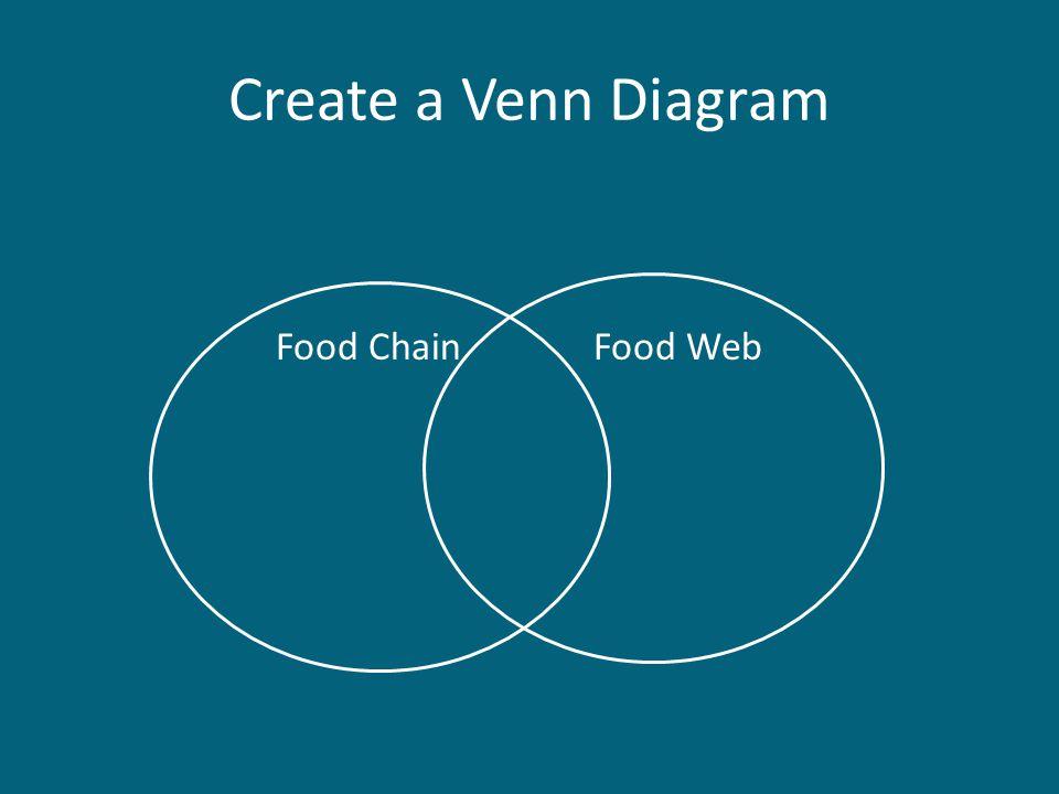 Create a Venn Diagram Food Chain Food Web