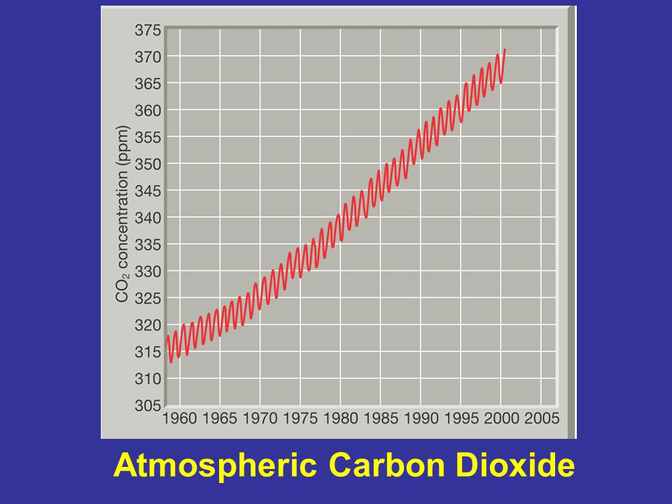 Atmospheric Carbon Dioxide