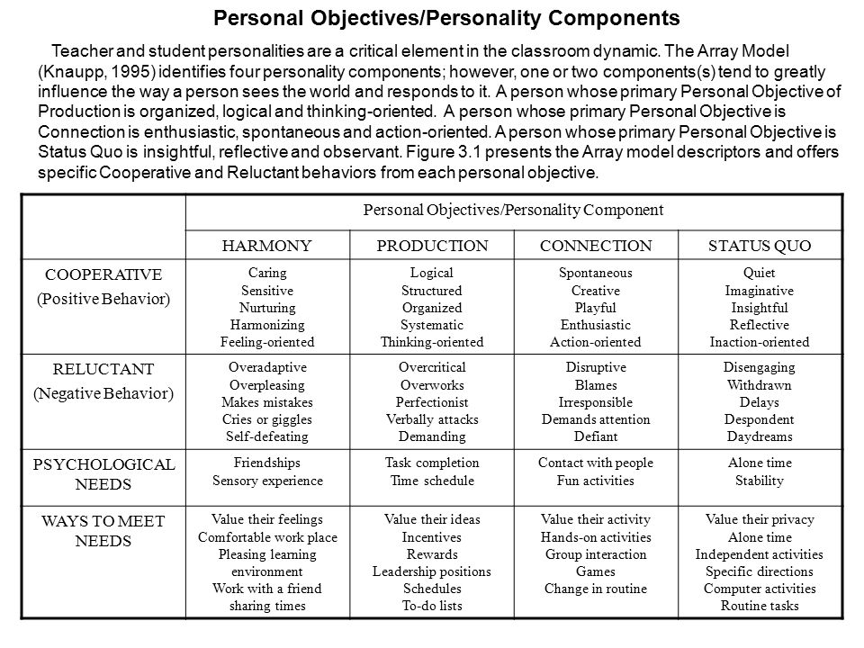 Personal Objectives/Personality Components