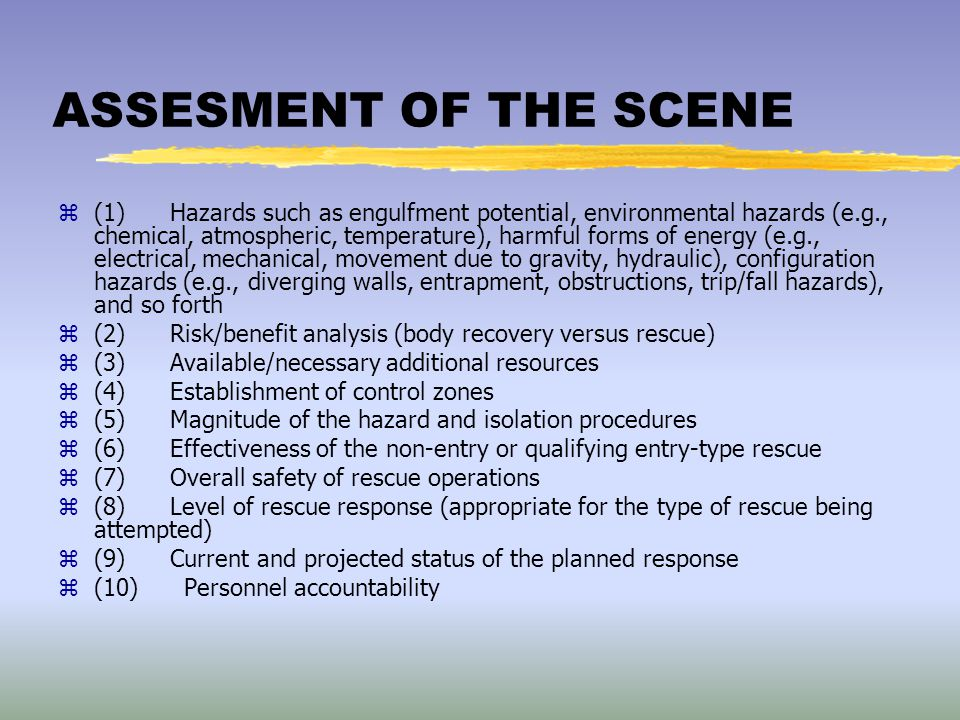 ASSESMENT OF THE SCENE