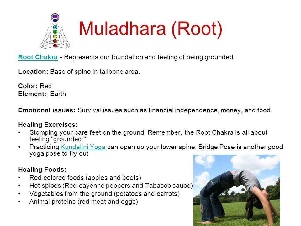 Muladhara (Root) Root Chakra - Represents our foundation and feeling of being grounded. Location: Base of spine in tailbone area.