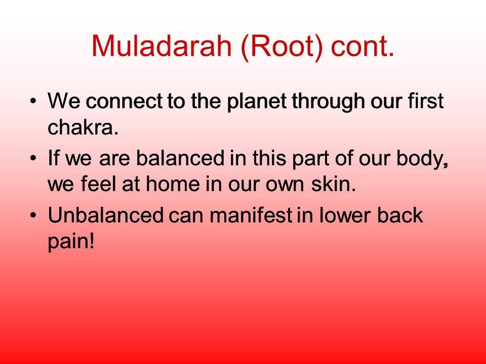 Muladarah (Root) cont. We connect to the planet through our first chakra.