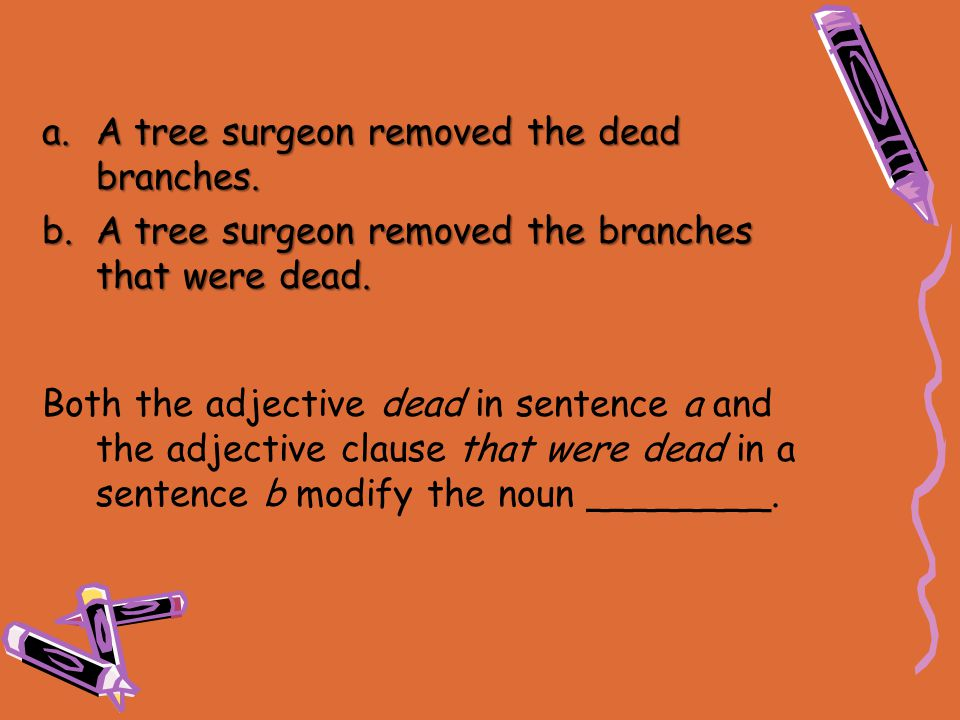A tree surgeon removed the dead branches.