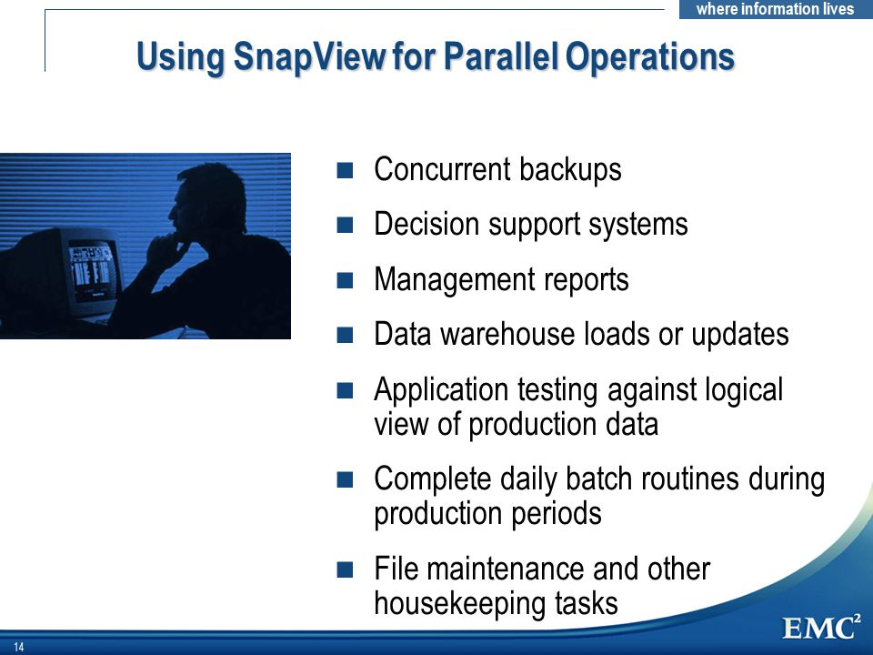 Using SnapView for Parallel Operations