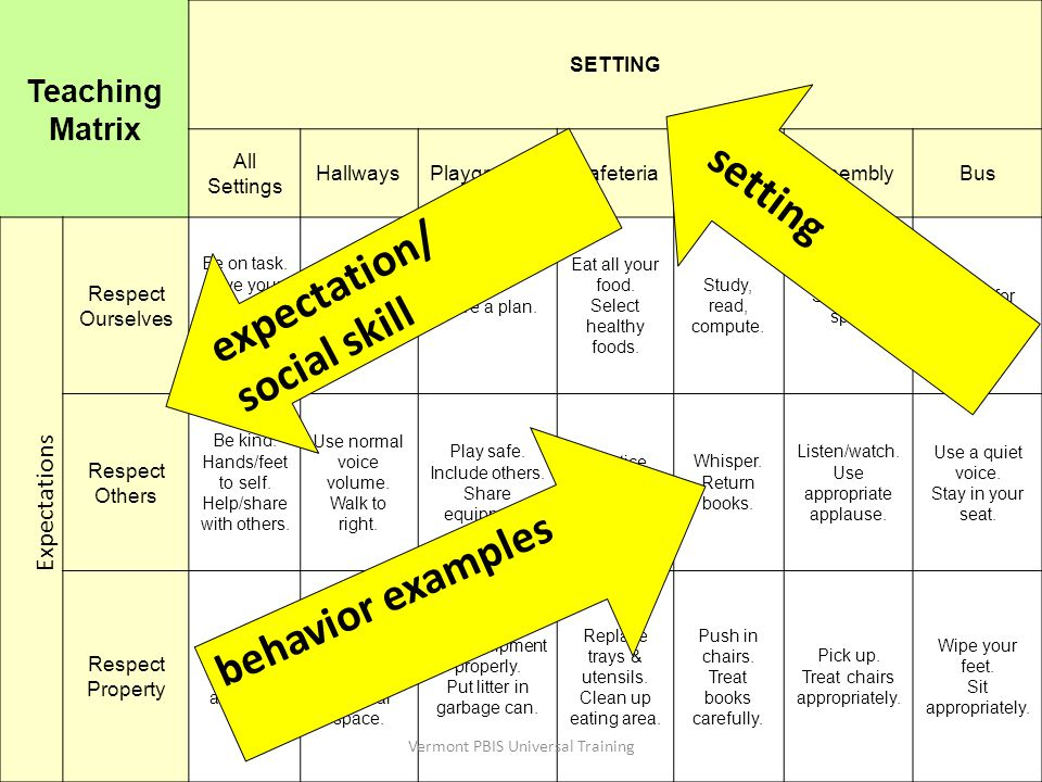setting expectation/ social skill behavior examples Teaching Matrix
