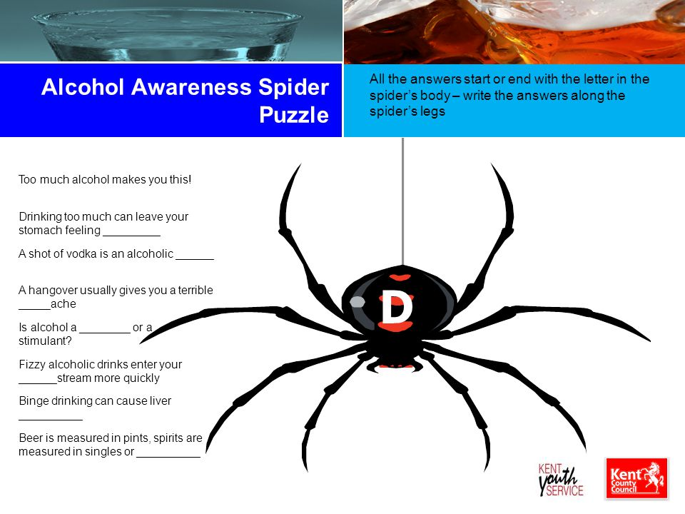Alcohol Awareness Spider Puzzle
