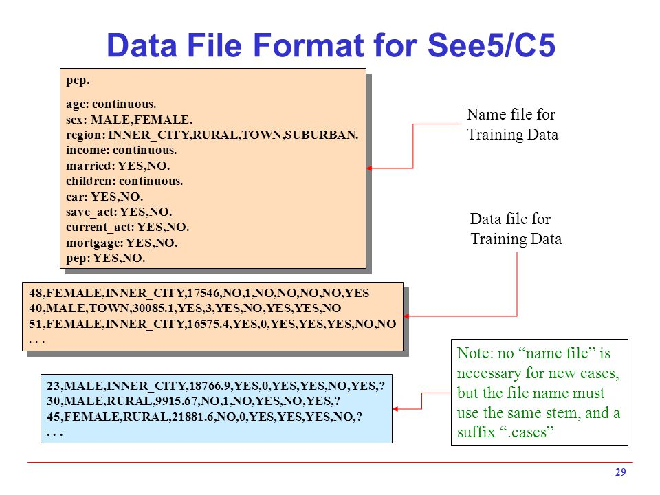 Data File Format for See5/C5