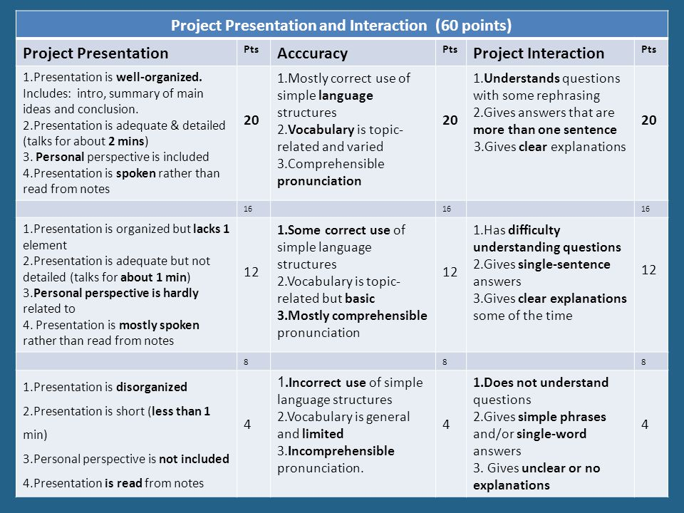 Project Presentation and Interaction (60 points)