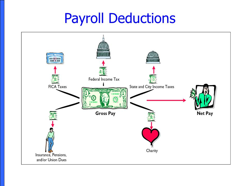 how to pay payroll taxes online