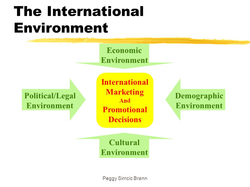 The International Environment