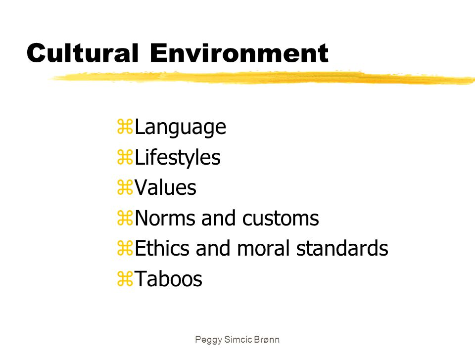 Cultural Environment Language Lifestyles Values Norms and customs