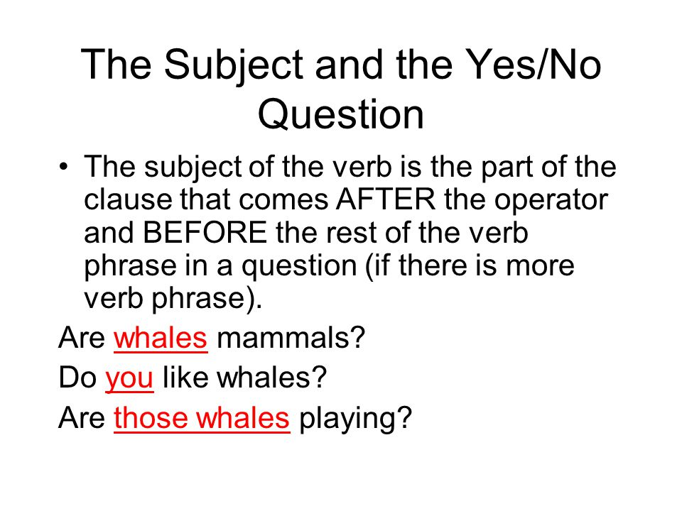The Subject and the Yes/No Question