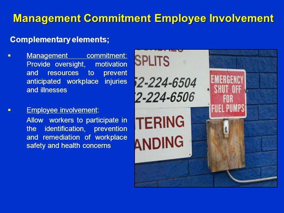 Management Commitment Employee Involvement