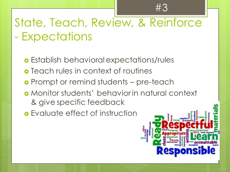 State, Teach, Review, & Reinforce - Expectations