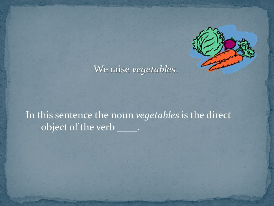 We raise vegetables. In this sentence the noun vegetables is the direct object of the verb ____.