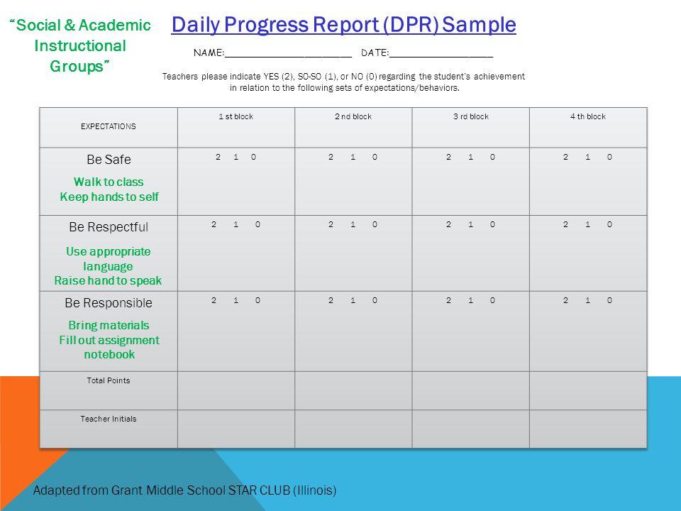 Daily Progress Report (DPR) Sample