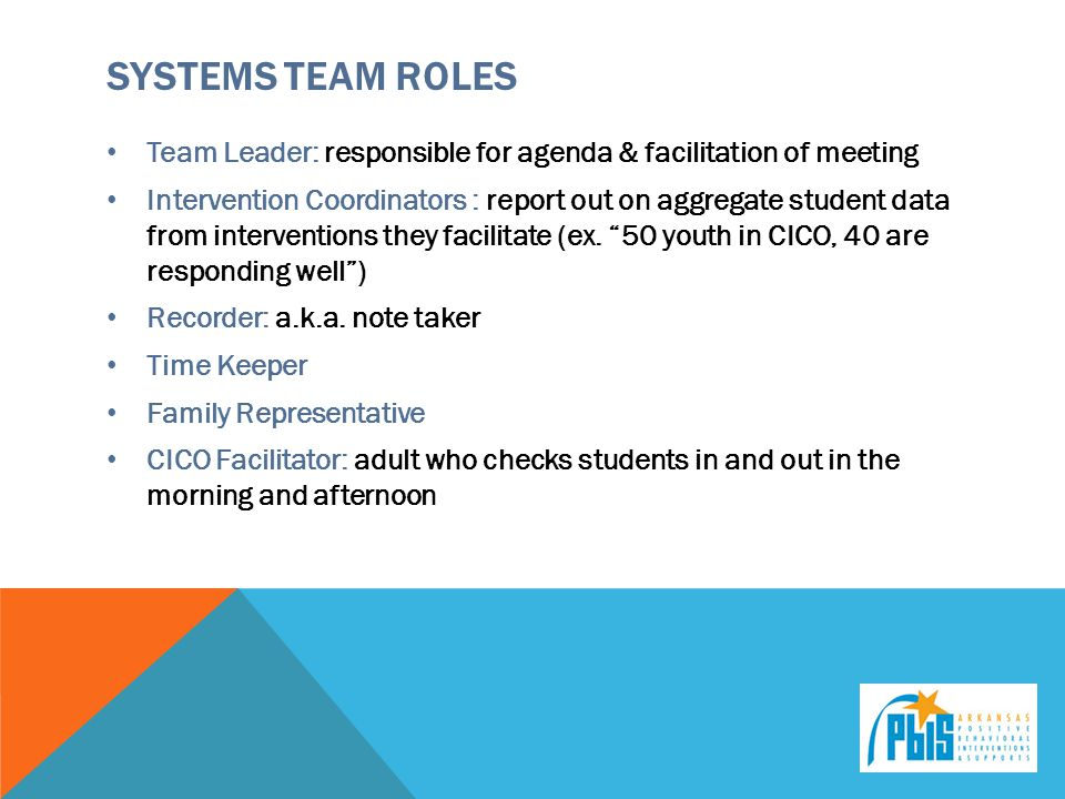 Systems Team Roles Team Leader: responsible for agenda & facilitation of meeting.