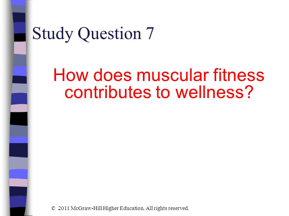 How does muscular fitness contributes to wellness