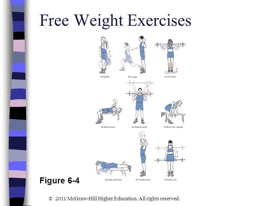 Free Weight Exercises Figure 6-4