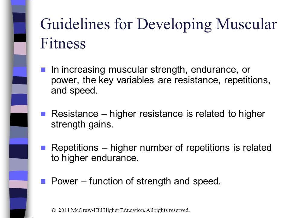 Guidelines for Developing Muscular Fitness