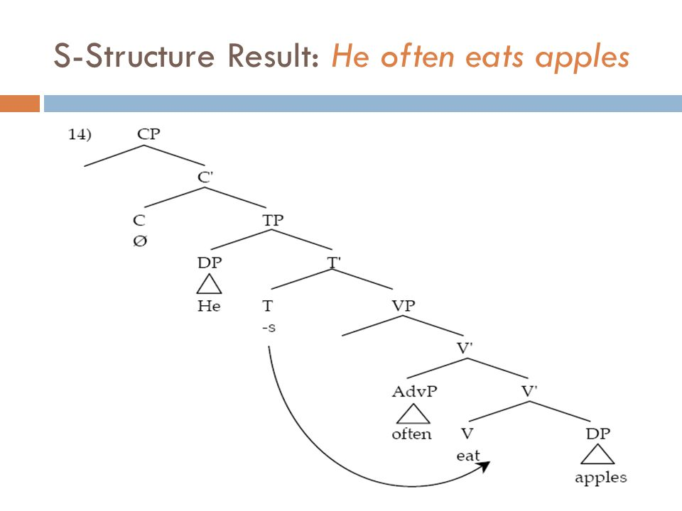 S-Structure Result: He often eats apples