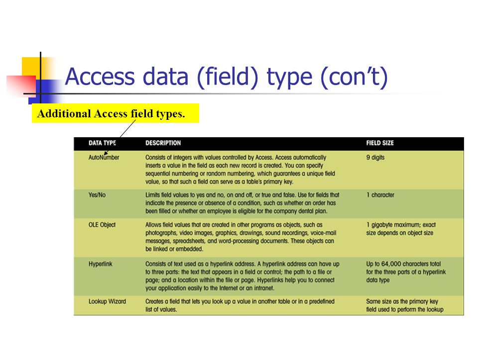 Access data (field) type (con't)