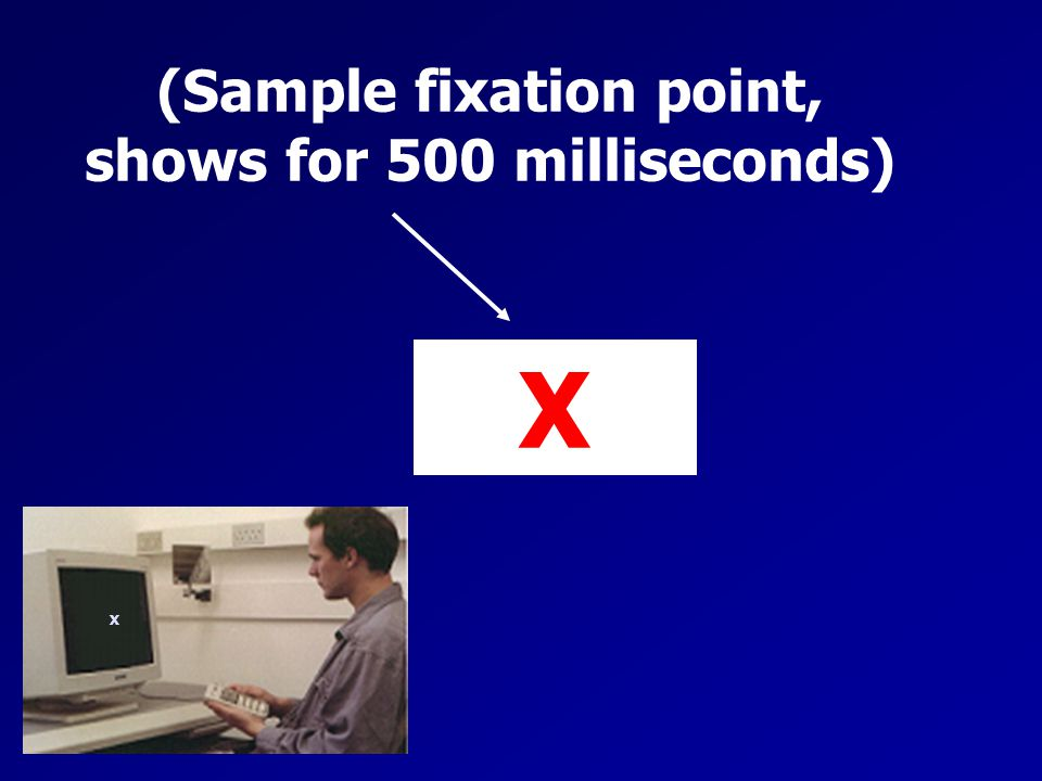 (Sample fixation point, shows for 500 milliseconds)