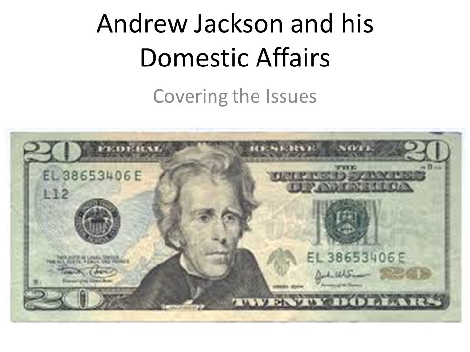Andrew Jackson and his Domestic Affairs