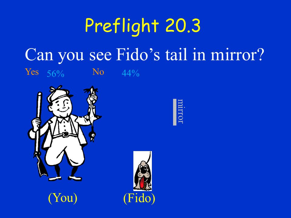Can you see Fido's tail in mirror