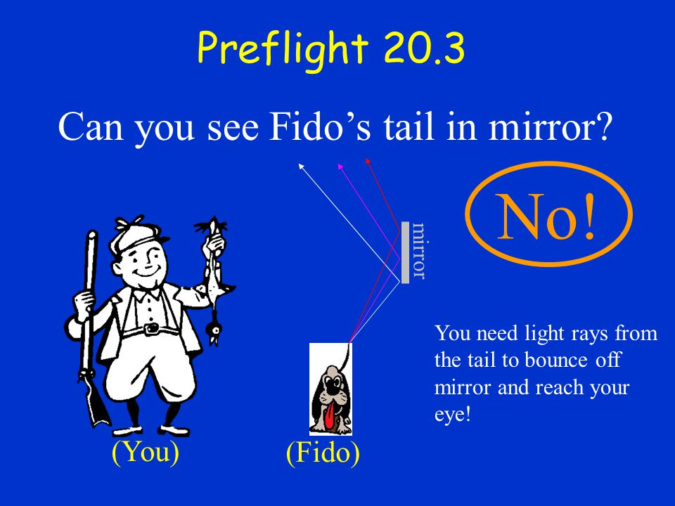 No! Preflight 20.3 Can you see Fido's tail in mirror (You) (Fido)