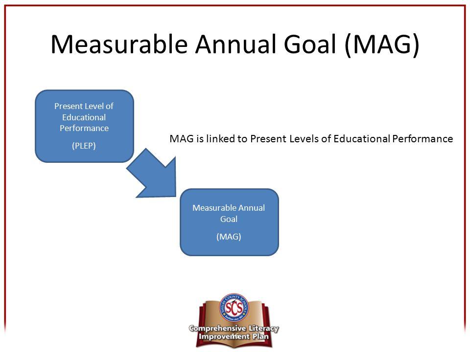 Measurable Annual Goal (MAG)