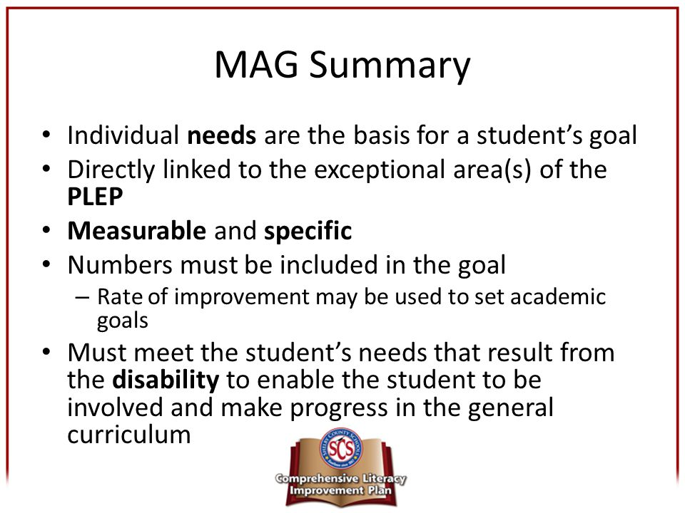 MAG Summary Individual needs are the basis for a student's goal