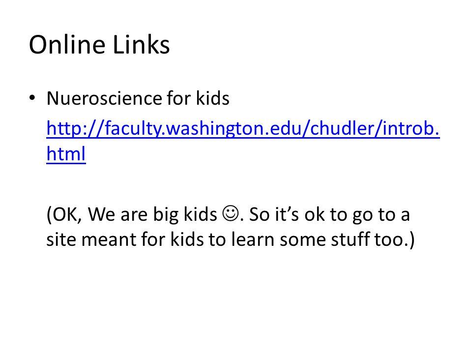 Online Links Nueroscience for kids